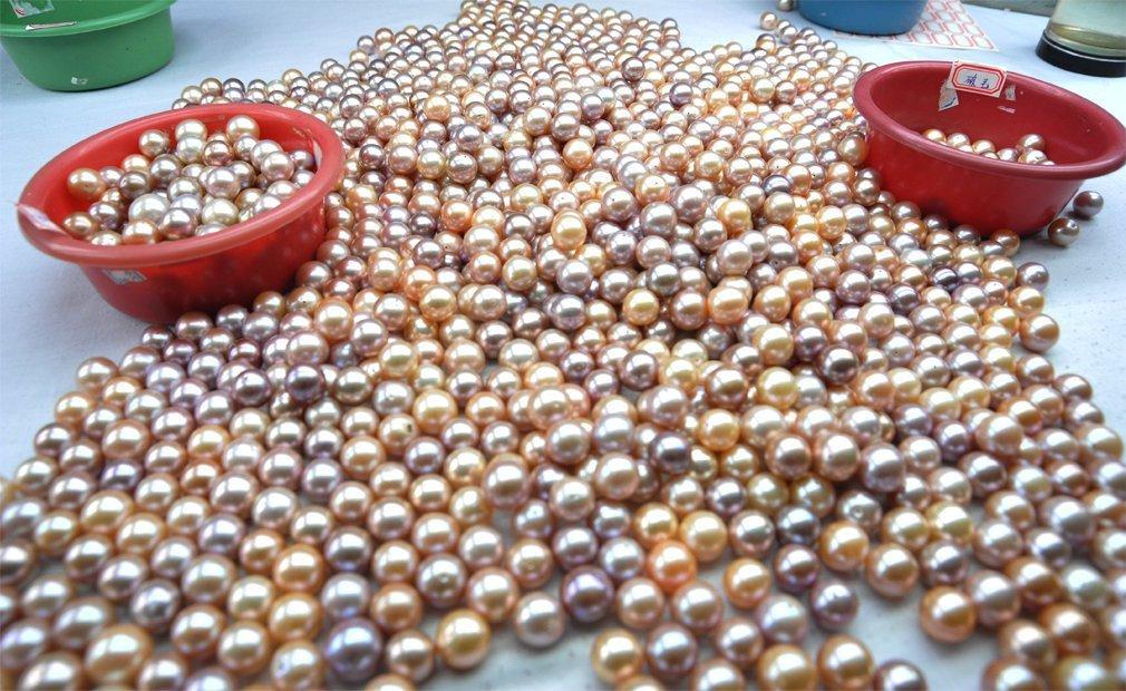 Genisi - Perle d'acqua dolce