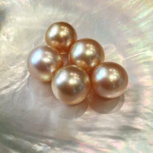 Genisi Perle Gold